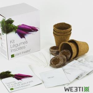 Kit pour planter des légumes insolites