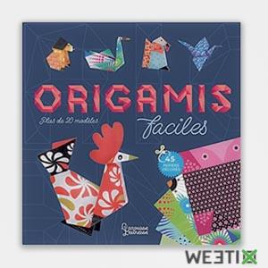 Livre pour apprendre à faire des Origamis